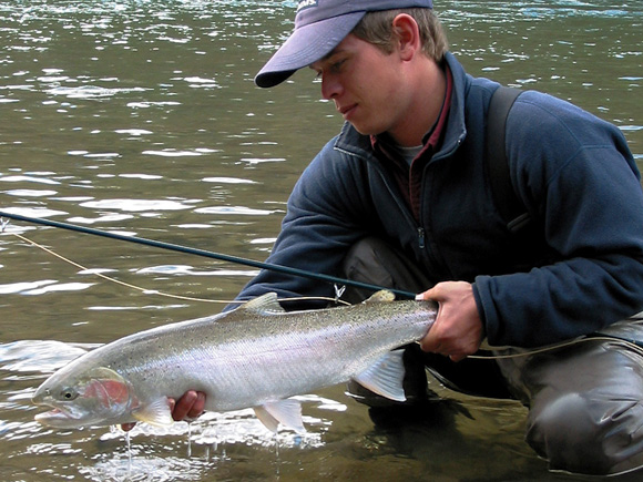 Maxwell Steelhead Guides :: Kevin Mayer with Steelhead on the Bulkley River, British Columbia
