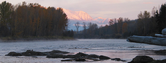 Maxwell Steelhead Guides :: Home Waters on the Bulkley River, British Columbia