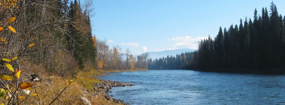Maxwell Steelhead Guides :: Scenic Reach on the Bulkley River, British Columbia